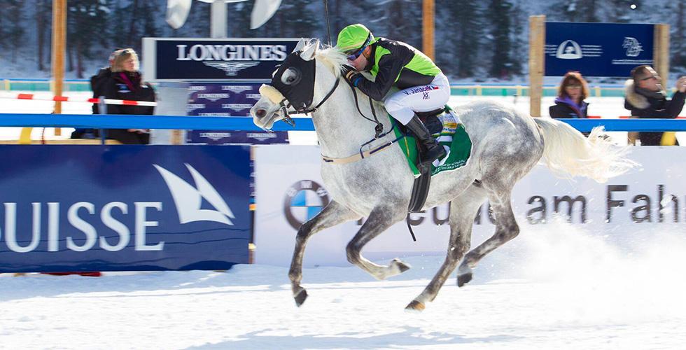 الجواد نيل عزيز يفوز في سويسرا
