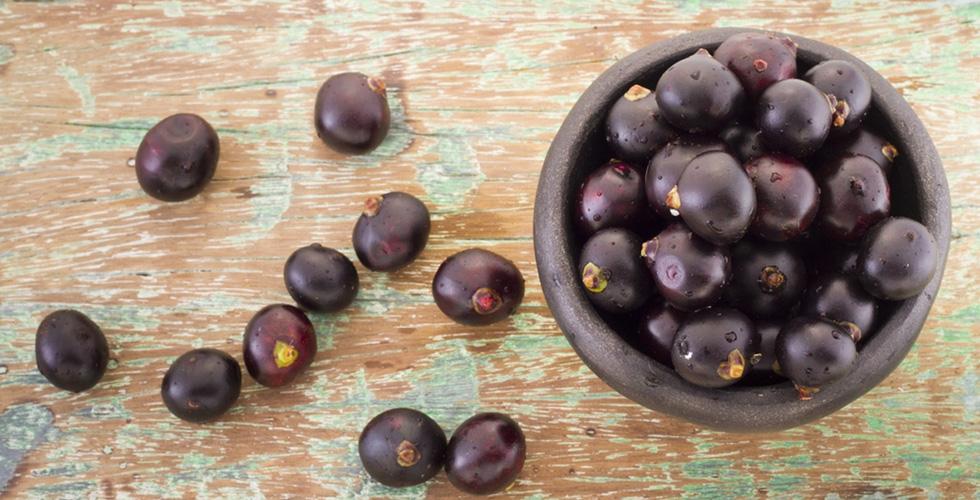 ٥ فوائد صحية لفاكهة توت الأكاي