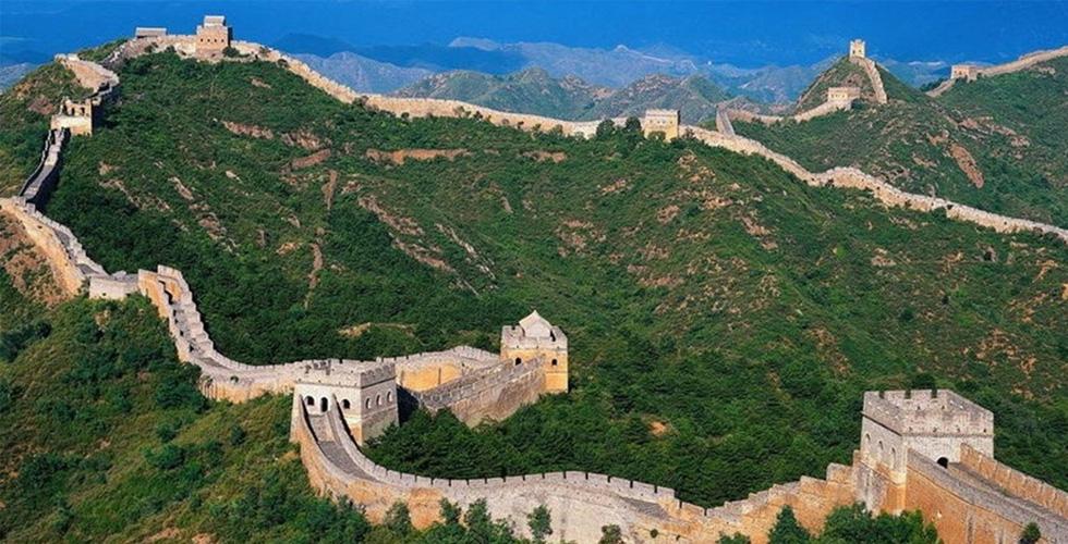 الصين والطاقة المستمدة من الخشب والنبات