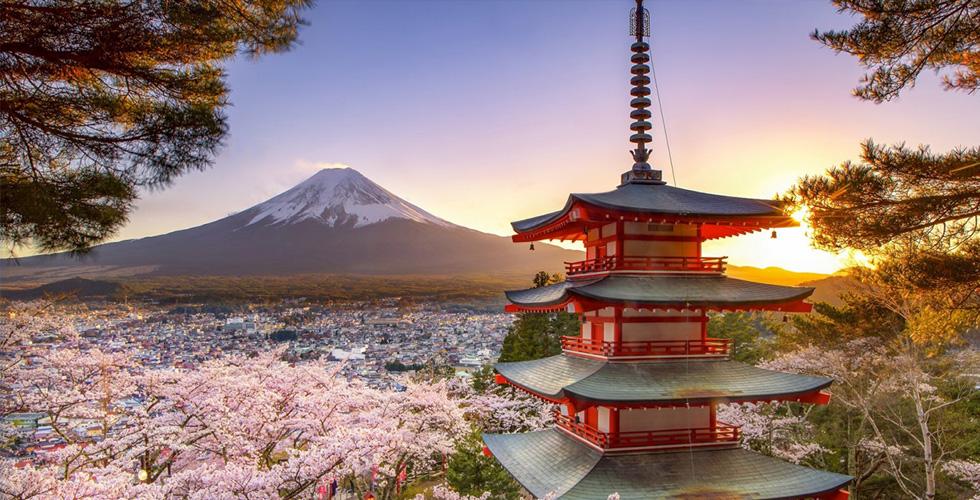 الضيافة اليابانية مع فنادق برينس