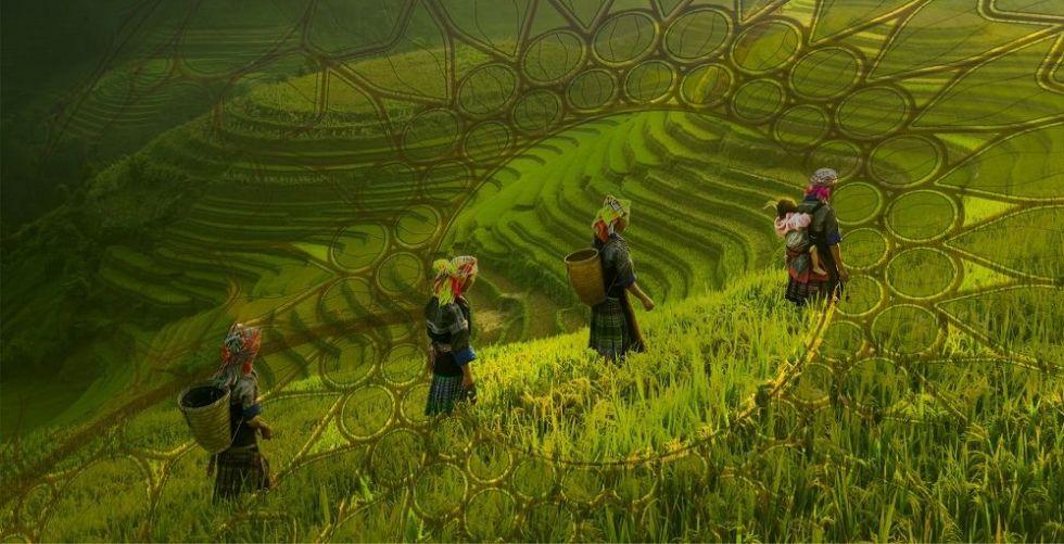 إكسبو بإمكانه تحفيز التعاون الدولي في مجال الأمن الغذائي
