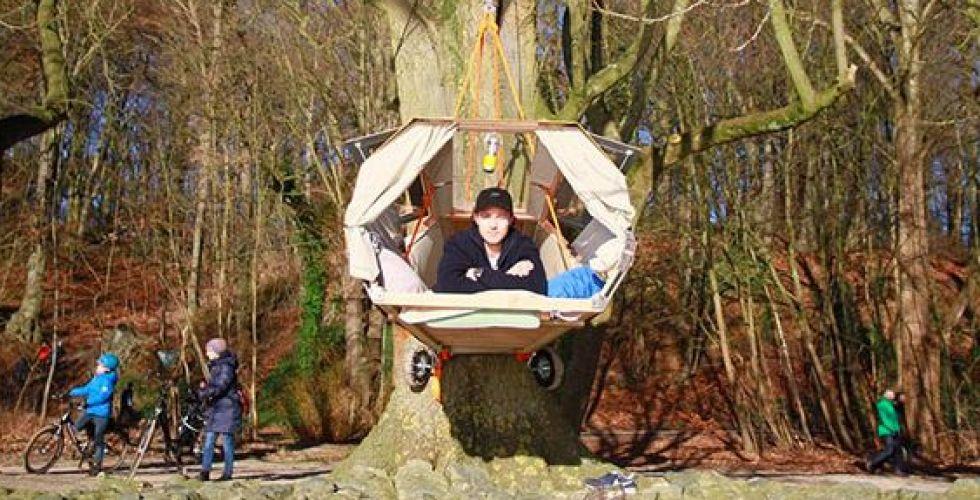 التخييم على غصن شجرة