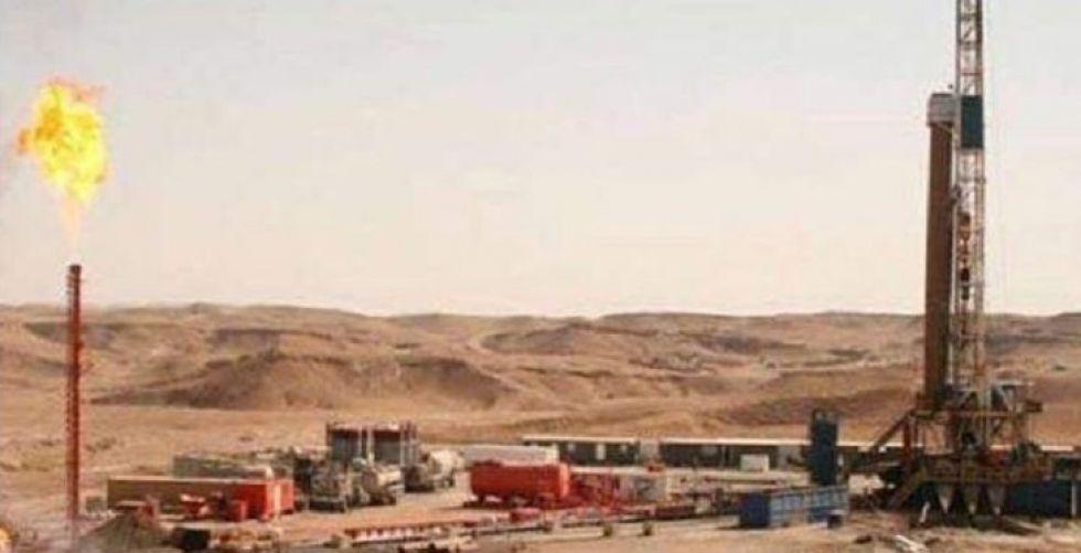 الاستثمار البترولي في مصر بلغ١٥مليار دولار
