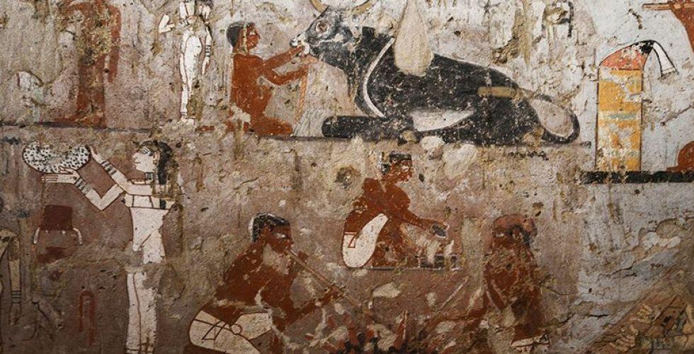 التنقيب مستمر في أجمل مقبرة فرعونية مُكتشفة حديثا
