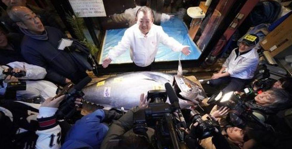 أغلى سمكة تونة لمطعم سوتشي في اليابان