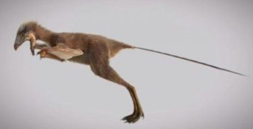 اكتشاف ديناصور من الخفافيش يغيّر النظرة الى أصل الطيران