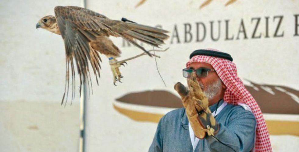 الصقور في السعودية من هواية الملوك الى السباقات المنظّمة