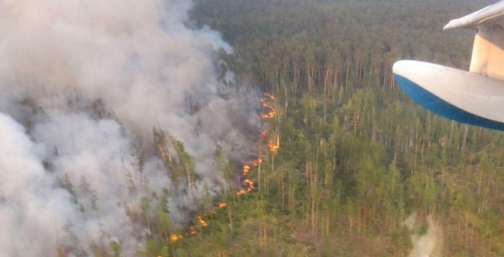 هل يكفي تدخل الطيران البرازيلي لإخماد حرائق الأمازون؟