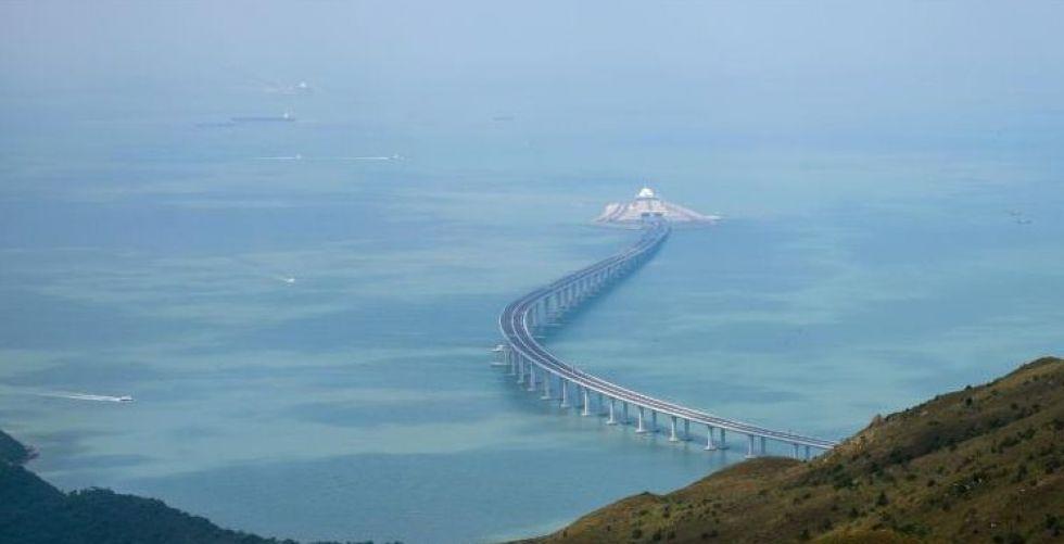 هل يقتل جسر الصّين الجديد الدّلافين؟