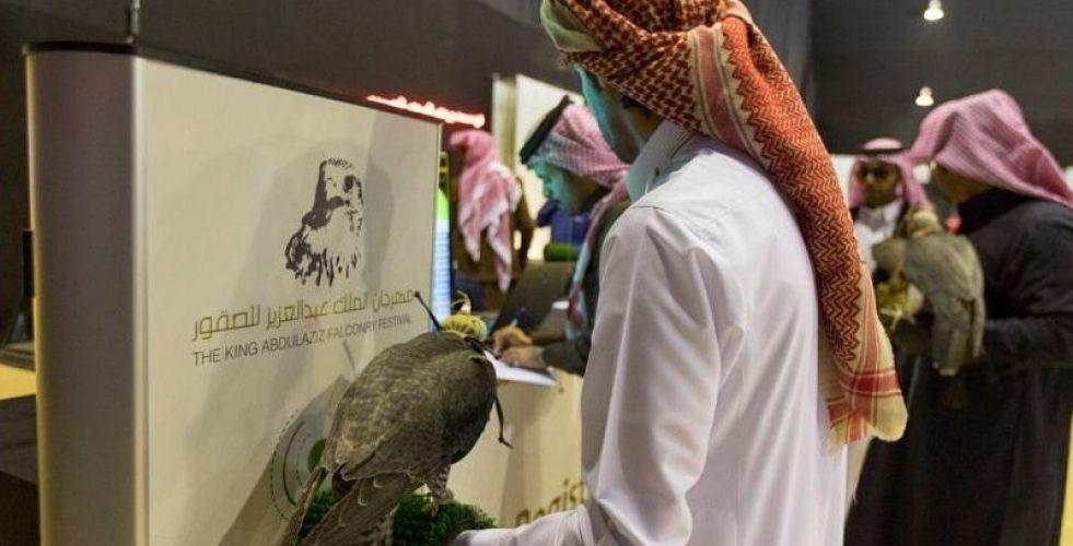 الاستعدادات لمهرجان الصقور في السعودية
