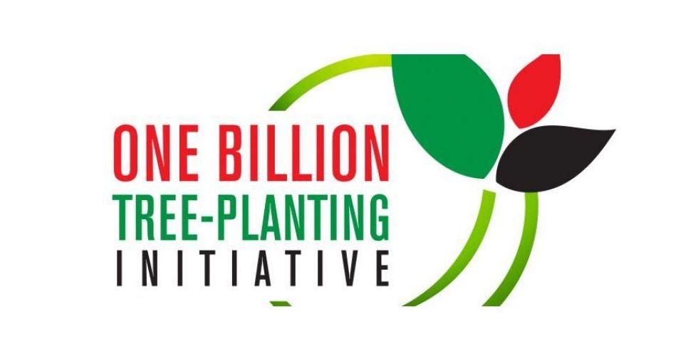 مبادرة لغرس مليار شجرة تطلقها مجموعة ستوري في الإمارات