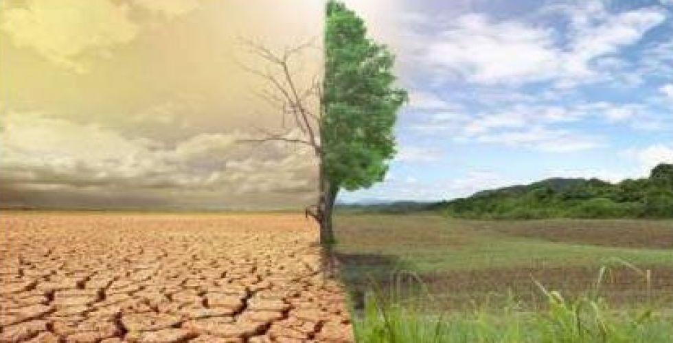 بنوك عالمية تنضم الى مكافحة التغيّر المناخي
