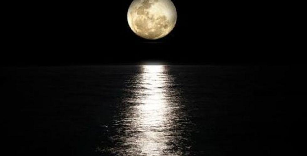 انسانٌ آليّ الى القمر لاكتشاف المياه