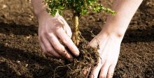 هل الإستثمار في الزراعة مُجدٍ ؟