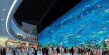 دبي: متعة لا حدود لها للعائلة