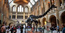 """الديناصور """"ديبي""""يجول في بريطانيا"""