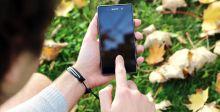 النبات يؤمن الطاقة للهواتف الذكية