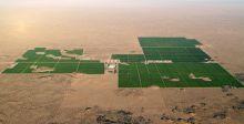 شركة معارض الرياض والنمو الزراعي في المملكة