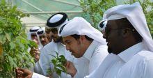 حديقة القرآن النباتية السبّاقة