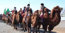 أكبر سباق جِمال في منغوليا