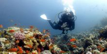 دليل السّاحل المصري للبحر الأحمر