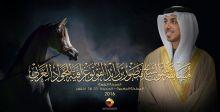 مسابقة تصوير الخيل العربي