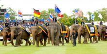 أنانترا: بولو الفيلة في بانكوك