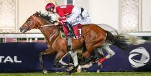 الحصان الأحمر الاول في قطر