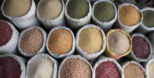 رأي السبّاق:ارتفاع أسعار الغذاء عالميا