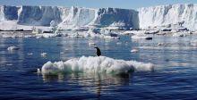 الجليد في العالم يتراجع