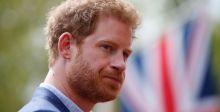 الأمير هاري: ما من أحد يريد أن يصبح ملكا