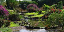 """هاواي: السفر الى """"جزيرة غاردن"""""""