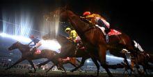 كأس دبي العالمي للخيول 2018