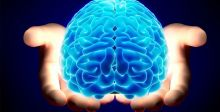 جيناتٌ في الدماغ  تجعل من الانسان مدركا