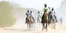 كأس محمد بن راشد للقدرة