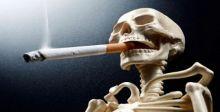 تراجع عدد المدخنين الذكور