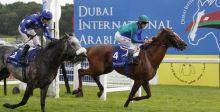 نجاحٌ كبيرٌ لسباق دبي الدولي للخيول العربية الأصيلة