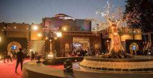 جوائز مهرجان القاهرة السينمائي لنجوم من الشرق والغرب