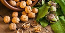 الأحماض الدهنية أوميغا ٦ وفوائدها الصحية