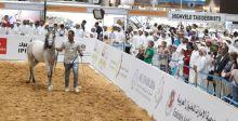 معرض أبوظبي الدولي للصيد والفروسية 2018